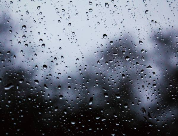 An average raindrop falls at the speed of roughly 7 miles an hour.
