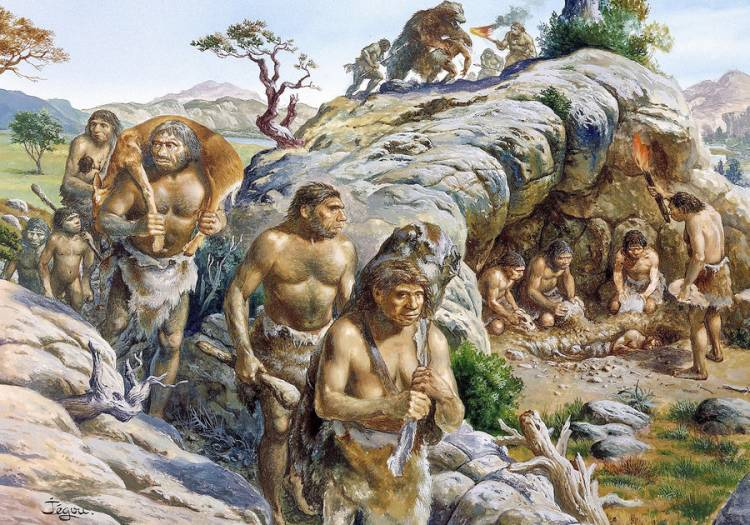 Neanderthals probably didn't speak in guttural grunts like we imagine. Studies of preserved Neanderthal throats and vocal organs suggest they likely had loud, high-pitched, nasally whines.
