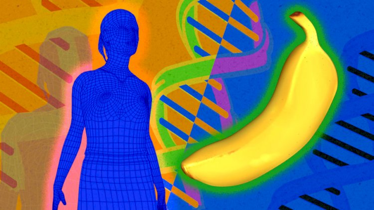 50% of human DNA is the same as a banana.