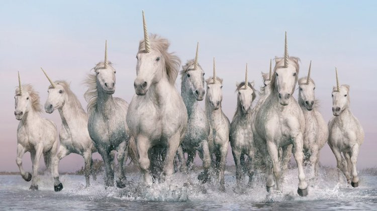 The collective name for a group of unicorns is called a blessing.