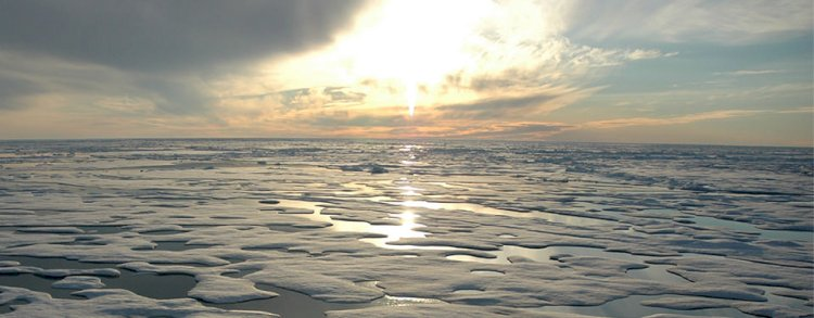 The Arctic Ocean is the smallest ocean in the World.