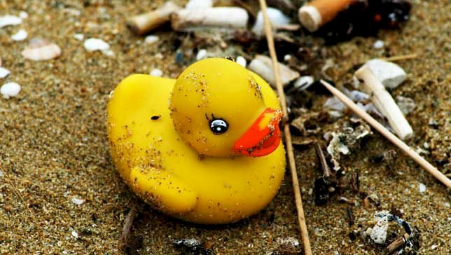 In 1992, a shipping crate containing 28,000 rubber duckies fell overboard, the bath toys are still washing ashore today.