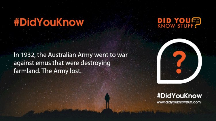 In 1932, the Australian Army went to war against emus that were destroying farmland. The Army lost.